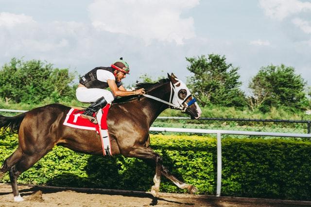 Scommettere ai cavalli: passione in crescita fra gli italiani. Ma con quali strategie?