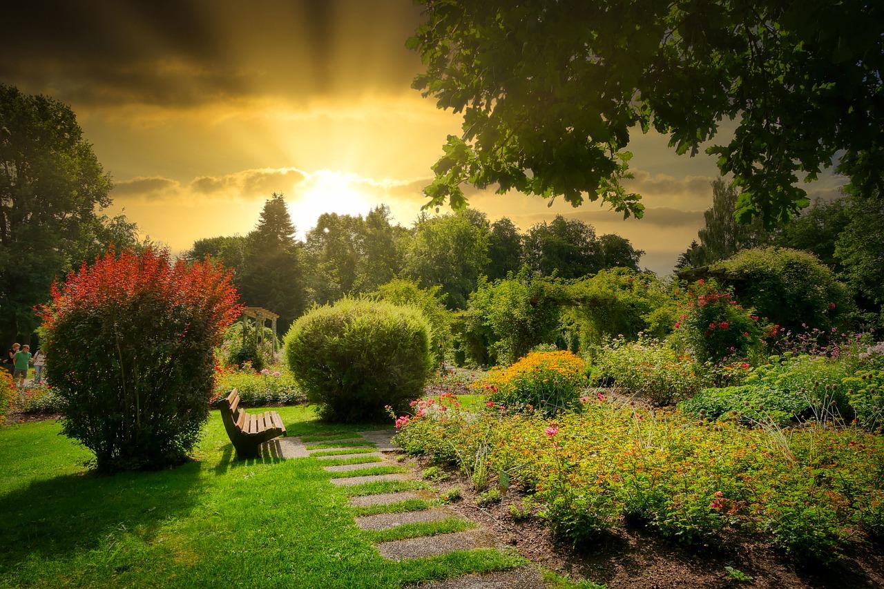 Come realizzare un giardino fai da te
