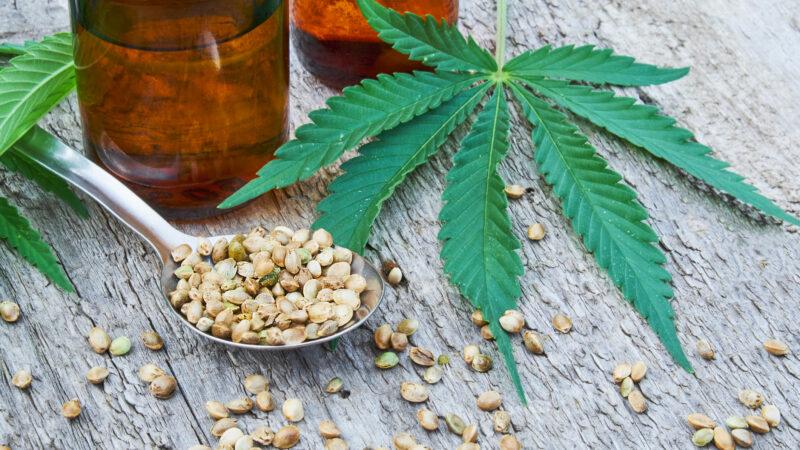 CBD: tutti i benefici di questo cannabinoide in ascesa